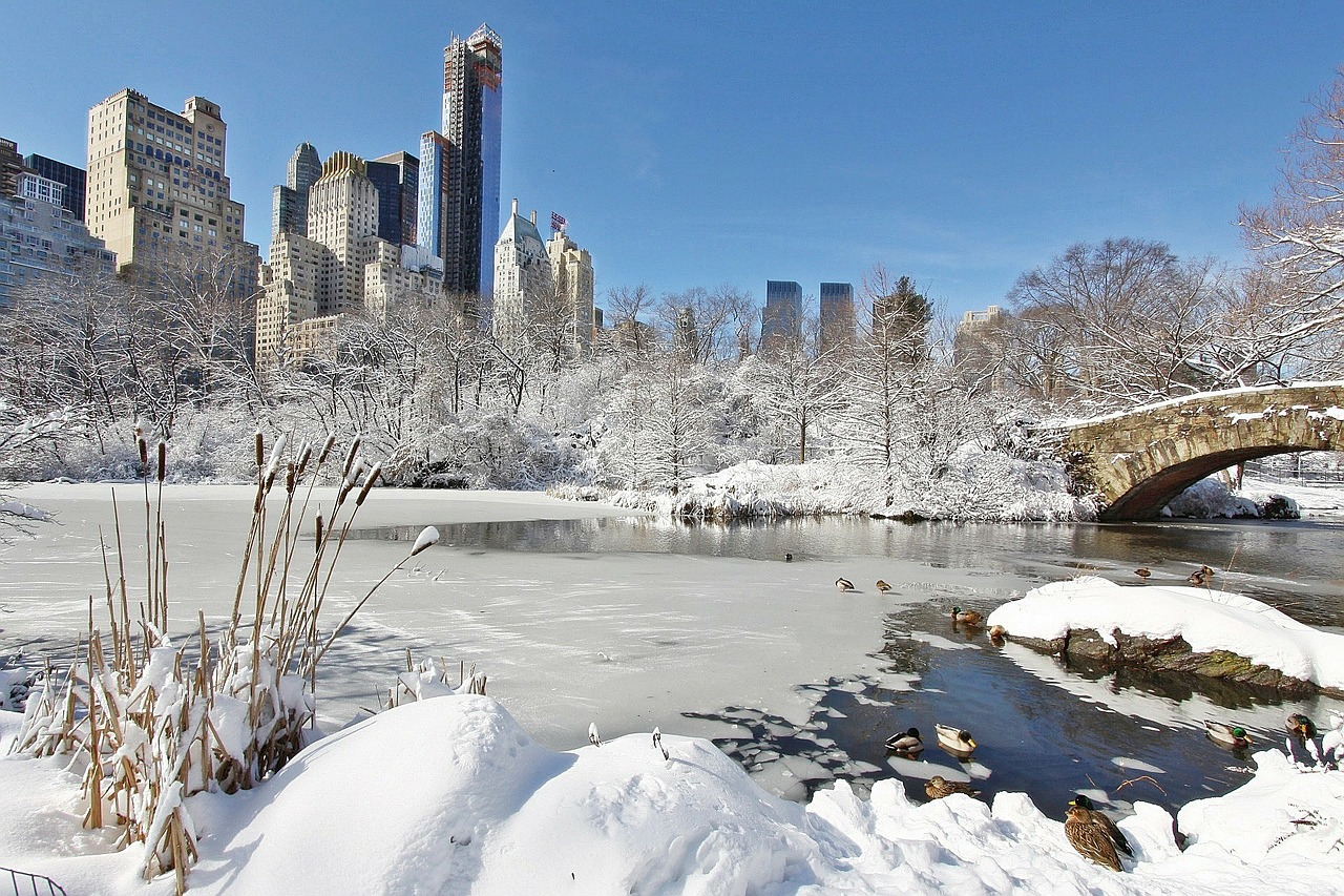 Winter Weather in New York